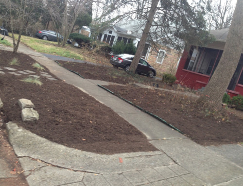 Weeds all gone and new mulch